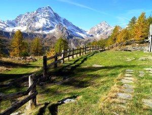 RFID e Turismo: vivere e proporre i servizi del turismo